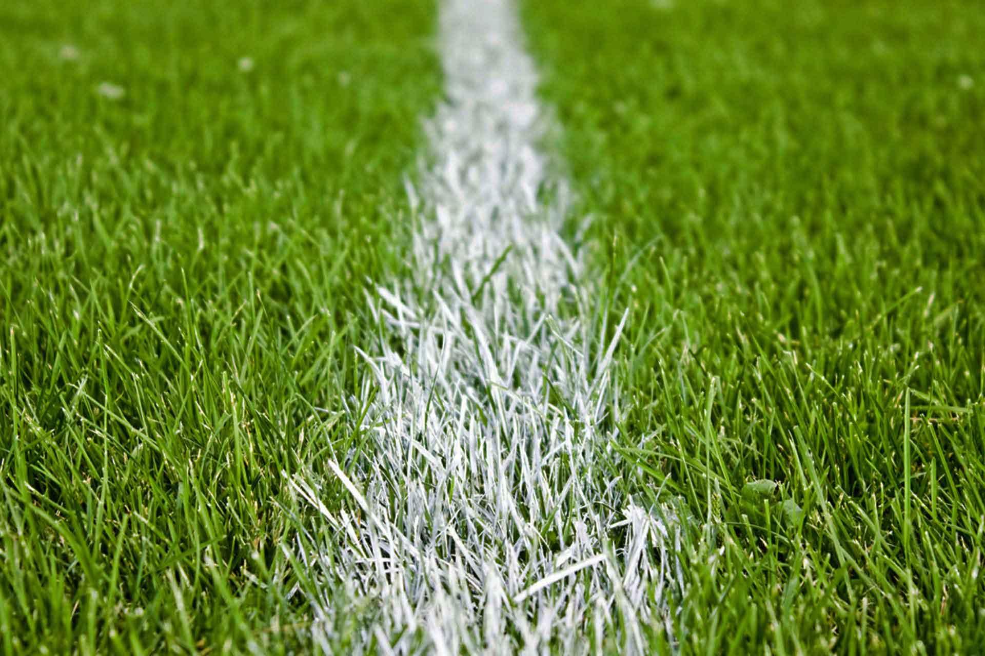 Football Grass Pitch 101072b Velizar Popov